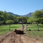 Blouberg African Ivory Route Camp